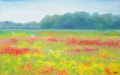 Painting - North Carolina Wildflowers Landscape Original Fine Art Painting by G Linsenmayer