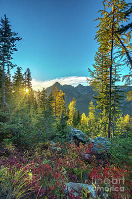 Photograph - North Cascades Fall Colors Sunstar by Mike Reid