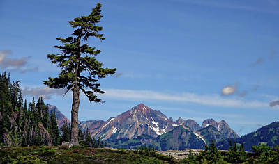 Photograph - North Cascades by Rick Lawler