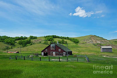 Photograph - North Dakota Barn by David Arment