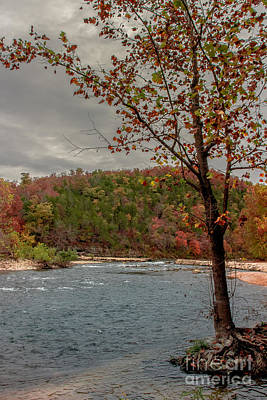North Fork Of The White River Art Print by Robert Frederick