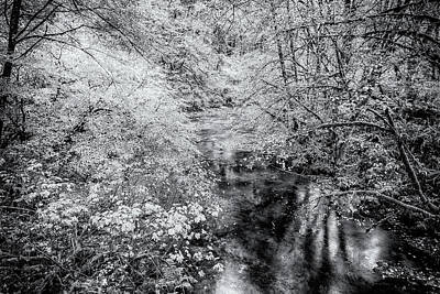 Photograph - North Fork Silver Creek Bw by Belinda Greb