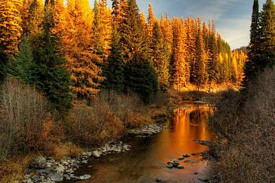 Photograph - North Fork Yaak River Fall Colors #1 by Robert Hosea