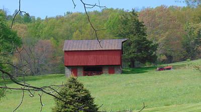 Photograph - North Garden Barn by Charlotte Gray