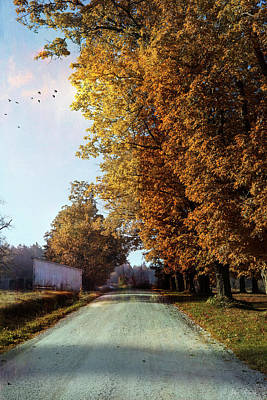 Photograph - North Hollow Road by John Rivera