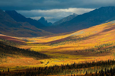 Without People Photograph - North Klondike River Valley, Tombstone by John Sylvester