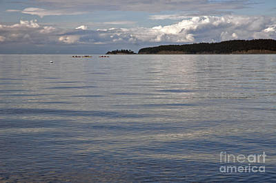 Photograph - North Of Orcas Island Wa by Cindy Murphy - NightVisions