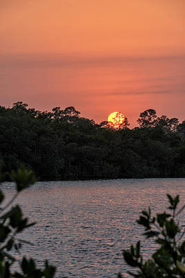 Photograph - North Port Sunset by Tom Singleton