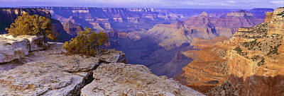 Photograph - North Rim Grand Canyon by Gary Shepard