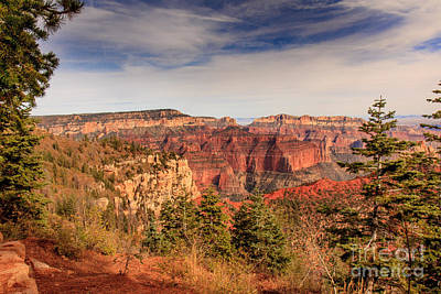 Photograph - North Rim View by Robert Bales