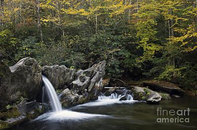 Photograph - North River Cascade - D009737 by Daniel Dempster