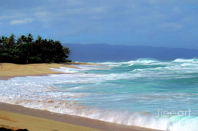 Photograph - North Shore Hawaii by Scott Cameron