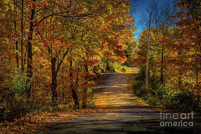Photograph - North Shore Road by Roger Monahan