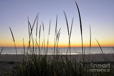 Waukegan Photograph - North Shore Sunrise by Birgit Tyrrell