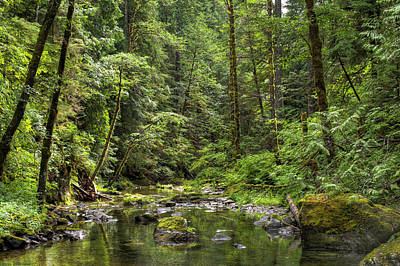 Photograph - North Souixon Creek by Ken Aaron