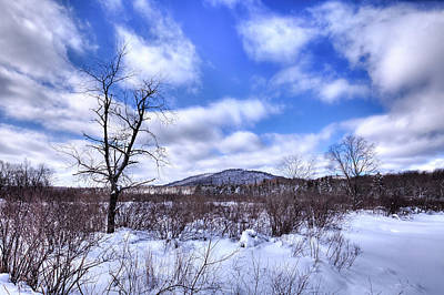 Photograph - North Street Snowscape by David Patterson