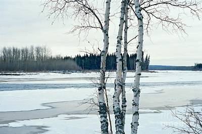 Photograph - North Thompson River by Frank Townsley