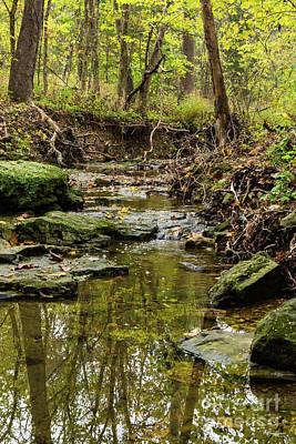 Photograph - North Wears Creek by Jennifer White