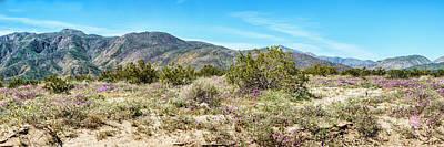 Digital Art - North West Anza-borrego Valley by Daniel Hebard