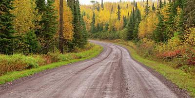 Photograph - Caribou Trail by Steve Stuller