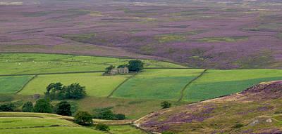 Impressionist Landscapes - North Yorkshire Moors by Ceri Jones