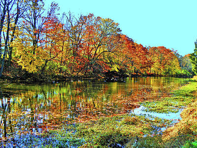 Photograph - Northeast Fall by Elizabeth Hoskinson