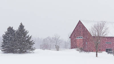 Photograph - Northeast Kingdom Snowfall by Alan L Graham