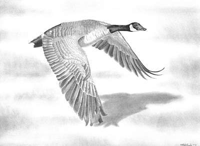 Canadian Geese Drawing - Northern Bound by Christopher Brooks