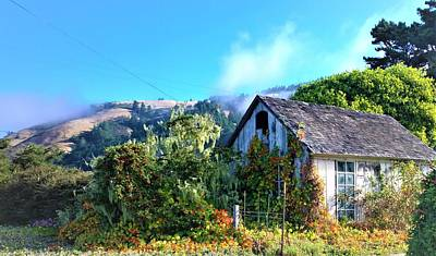 Photograph - Northern California Cottage by Lisa Dunn
