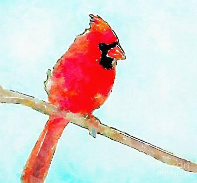 State Love Nancy Ingersoll - Northern Cardinal by Modern Watercolor Art