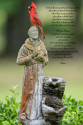 Photograph - Northern Cardinal With St. Francis Prayer by Bonnie Barry