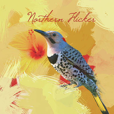 Photograph - Northern Flicker Watercolor Photo by Heidi Hermes