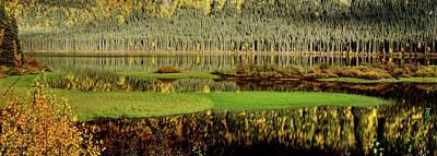 Northern Lake Art Print