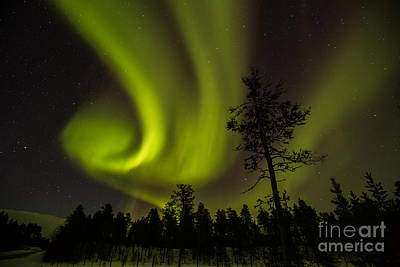 Photograph - Northern Light In Finland by Gabor Pozsgai
