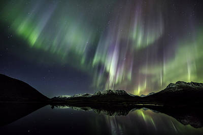 Arctic Photograph - Northern Light Rays by Frank Olsen