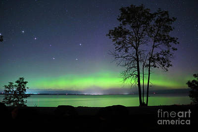 Photograph - Northern Light With Big Dipper by Charline Xia