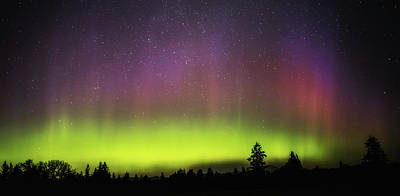 Photograph - Northern Lights by Angie Vogel