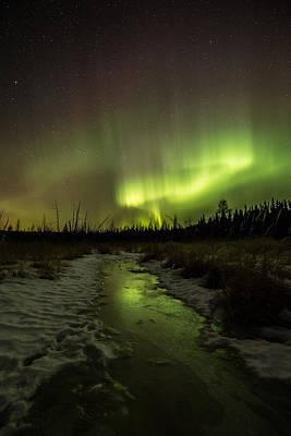 Sheep - Northern Lights at the Sleeping Giant Provincial Park by Jakub Sisak