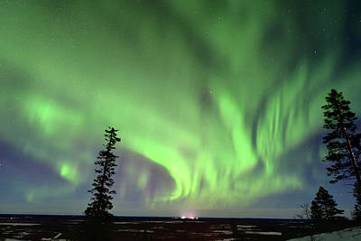 Northern Lights Art Print by Edwin Verin