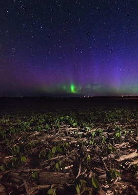 Farm Photograph - Northern Lights Near Goderich  by Cale Best