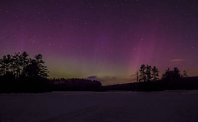 Photograph - Northern Lights Over Central Massachusetts by John Burk
