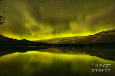 Photograph - Northern Lights Over Edith by Adam Jewell