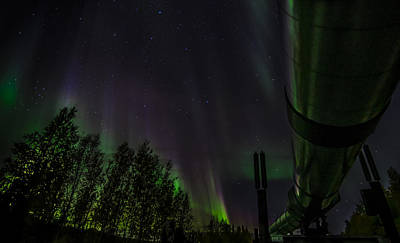 Robin Williams Photograph - Northern Lights Over Pipeline by Robin Williams