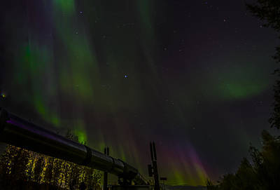 Robin Williams Photograph - Northern Lights by Robin Williams
