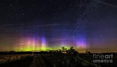 Photograph - Northern Lights Surprise by Willard Sharp