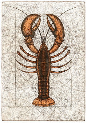 Mixed Media - Northern Lobster by Charles Harden