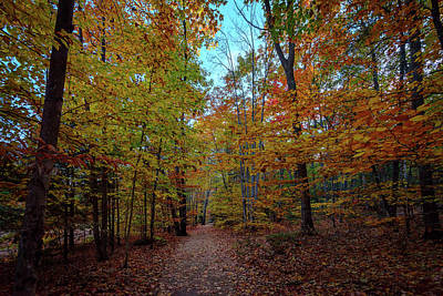 Photograph - Northern Loop Trail by Rick Berk
