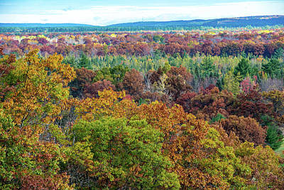 Photograph - Northern Michigan Fall by Paul Johnson