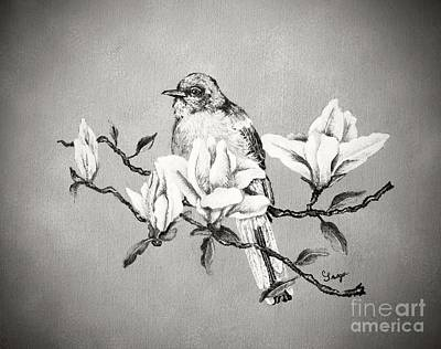 Northern Mockingbird And Magnolias - Black And White Original
