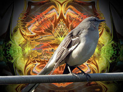 Mockingbird Digital Art - Northern Mockingbird Enhanced #2 by Glen Faxon